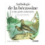 Anthologie de la bécassine et des petits échassiers
